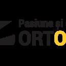 Sk-s.ro – DR. Dunca Ioan